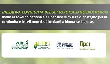 Urgenti nuove misure per assicurare l'importante contributo delle biomasse nel mix energetico al 2030